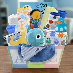 Welcome Home Baby Boy Gift Basket Medium