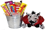 Florida State Snack Bucket Gift Basket