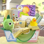 Welcome Home Baby Gift Basket Medium