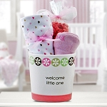 Welcome Little One Baby Girl Gift Basket
