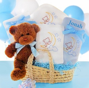Beary Special Arrival Moses Basket- Boy
