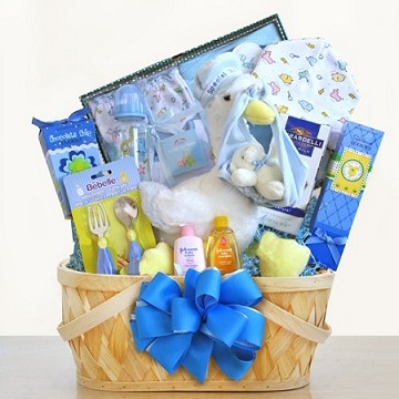 Special Stork Delivery Baby Boy Gift Basket