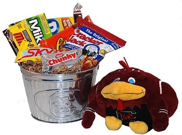 University of South Carolina Snack Bucket Gift Basket